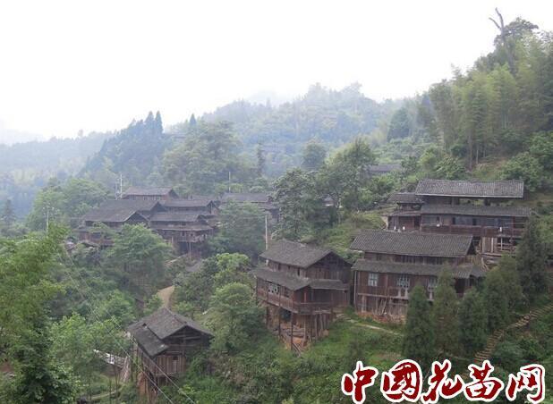 楠木山苗寨位于靖州县西部湘黔两省交界的崇山峻岭之中,这里山高谷
